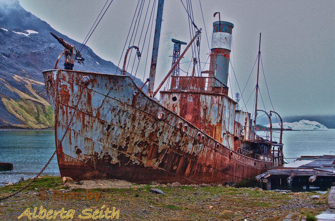 The Petrel, an old whaling ship in Grytviken
