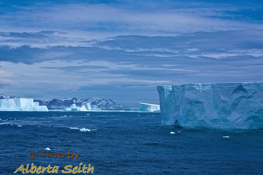 Tabular ice neat Grytviken