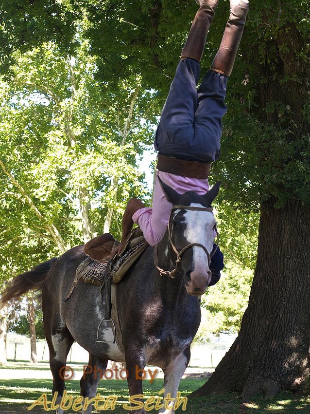Gaucho-horse performance at the Estancia