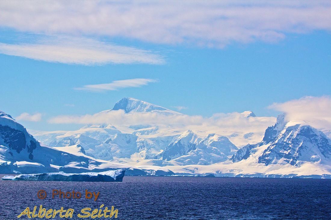 Whales in the Gerlache Strait