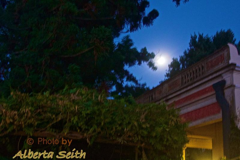 Moon over the Estancia El Umbu de Areco