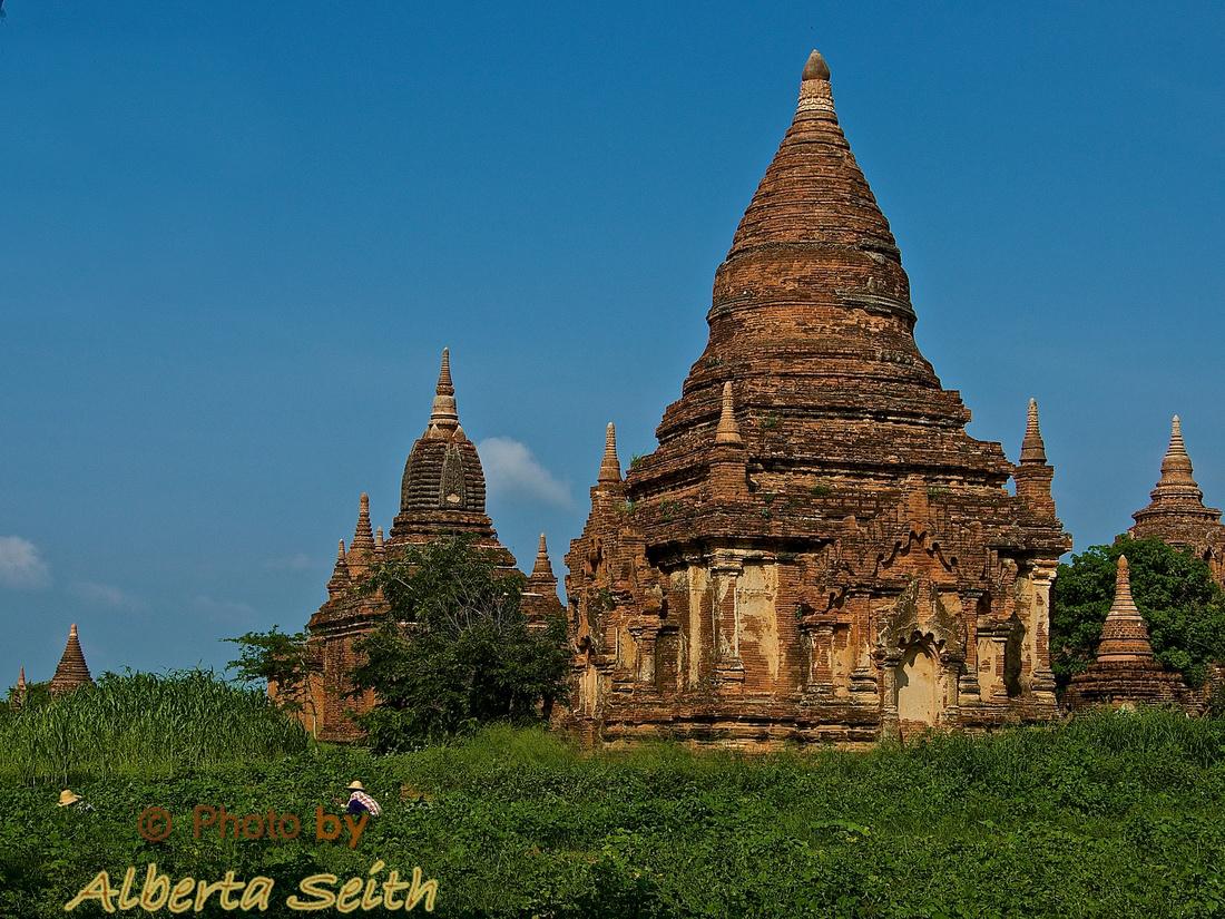 Ancient Temple among Sesame Plants