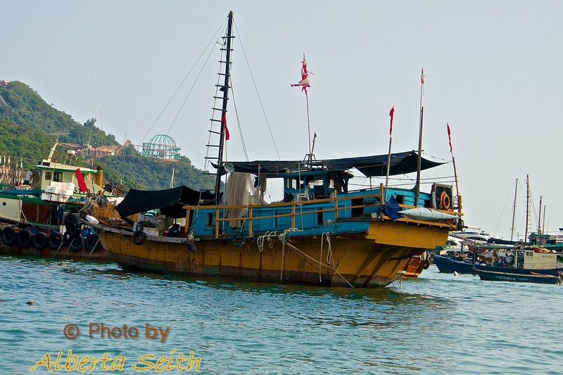 Stanley Harbor Junks